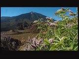 Parque Nacional del Teide Tenerife isla sobre nubes 2