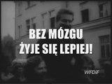 Komunikat Ministerstwa Prawdy (nr 291) tylko na Fronda.pl: Bez mózgu żyje się lepiej!