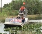 Everglades Nationalpark Airboat Tour & Tierwelt