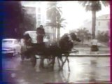 TUNIS RETRO SOUS LA NEIGE FREDDY GALULA
