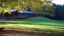 Unicoi State Park Camping Trip and Anna Ruby Falls  Nov 1-3,