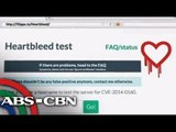 'Heartbleed Bug' alarms netizens