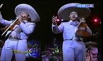 Mariachi Vargas (puras rancheras)
