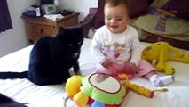 Funny cats and babies playing together   Cute cat & baby compilation