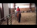 Lorri and Pepper Parelli Freestyle Level 4 audition - Passed 4+