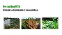 Formation MSV Itinéraires techniques et mécanisation Jour 2 Présentation d'outils : Angélique Besson