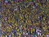 Brésil - Pays-bas (1-1 / 4-2) / Coupe du Monde 98 / Telefoot