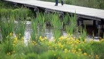 La Zone Humide du Lac d'Aydat-Valeurs d'exemples CAUE Lauréats 2013