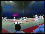 Festival des arts martiaux, Kyokushinkai bercy 2003