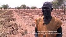 Burkina Faso le réchauffement climatique qui épuise les sols : témoignage d'un agriculteur