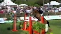 Equitation Concours Saut d'Obstacles
