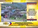 'Yolanda' leaves 10 people dead in Palawan