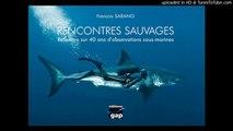 """le Livre """"Rencontres SAUVAGES"""" : Une philosophie pour les océans et les hommes"""