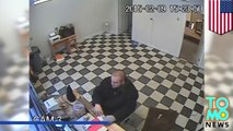 Man's best friend saves the day: Thor, a pit-bull mix attacks a gunman and saves his owner
