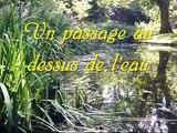 Reflet un poème de Juliette Silva Littérature Poésie Nature Eau