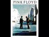Pink Floyd - Shine on your Crazy Diamond/Syd Barrett Trib'