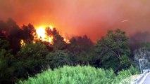 Incendio Alt Emporda - Biure d'Emporda - Mossos d'Esquadra