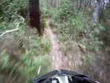 """Mountain Bike Fun in Taree """"The Gully"""""""