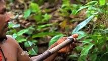 Rainforest Tribes Declare War on Big Oil Destroying Rainforest, Very Sad