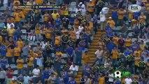 Tigres(MEX) vs Emelec(ECU), 2-0, Copa Libertadores 2015, 1/4 de Final, Vuelta, 26-05-2015, Full Highlights