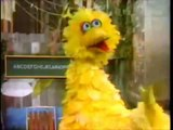 "Sesame Street Big Pimpin - ""Ain't No Fun"" Snoop Dogg, Warren G., Kurupt, Kermit, and Big Bird"