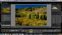 Using Lightroom 3 to convert RAW file into a JPG