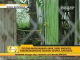 3 family members killed by helper