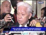 Palace welcomes Brillantes' Comelec stay