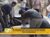 Skeletons found in septic tank in P'que