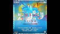 Dancehall, (Soca), Instrumental, Zulu Tribe Riddim, May