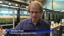 Environnement : comment fonctionne un simulateur de crues?