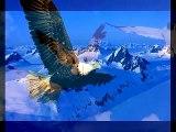 Reamonn - Free Like A Bird