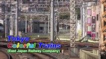 (HD) Tokyo Colorful Trains ~East Japan Railway Local & Rapid~ (東京の通勤電車たち)