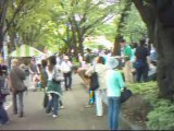 相模原市民若葉祭り