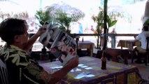 SHARKTOPUS FULL MOVIE HINDI DUBBED   HD
