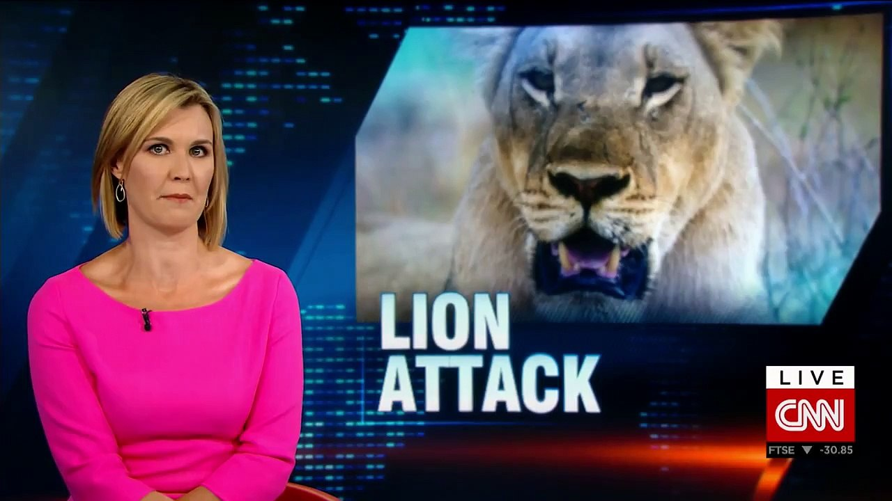 American woman killed by lion in South Africa
