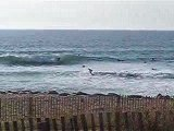 surf quiberon Port bara 28 mars bretagne by gumgum surfing