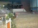 concour obstacle chevaux