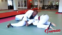 15 Hapkido Moves in 90-Seconds - Toronto Hapkido Academy