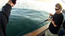 Mirage Sportfishing - California Halibut Fishing 55lb and 36lb  08.17.2011 Channel Islands