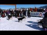 Les Fourgs: championnat d'europe de chiens de traineaux
