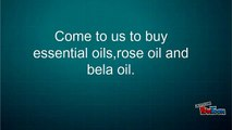 Specializations in Essential Oil Absolutes, Pure Essential Oils