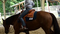 show concours western 2015