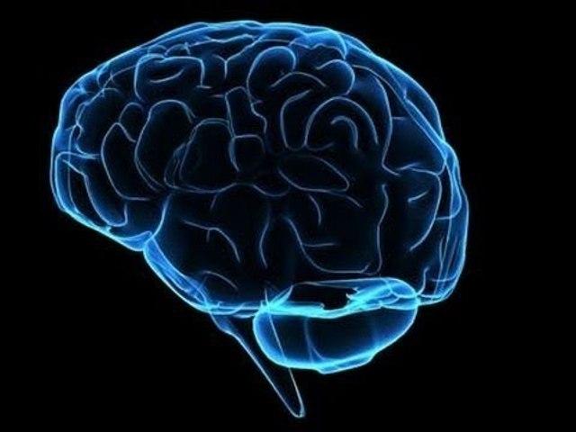 İnsan Beyninin Çözülemeyen Büyük Sırrı