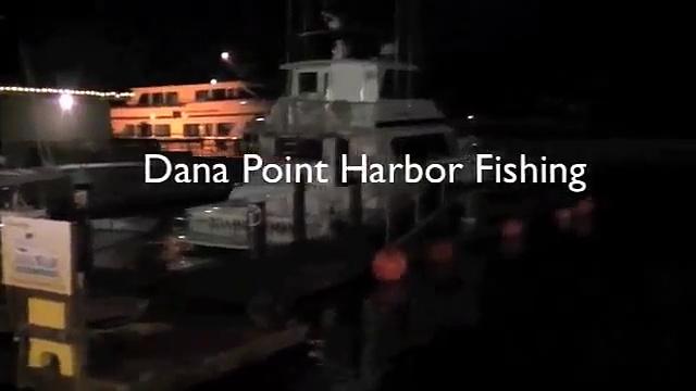 bass fishing at dana point harbor