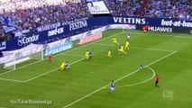 Christian Fuchs lashes home a superb volley for Shalke