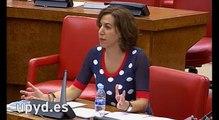 """Irene Lozano, UPyD: """"Los militares sufren doblemente los recortes: por funcionarios y por militares"""""""