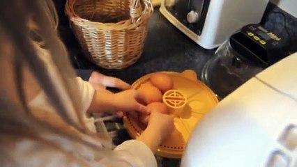Brinsea Mini Advance Incubator  - Incubating Chicken Eggs