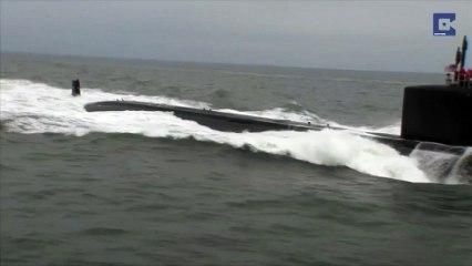 Des dauphins saluent un nouveau sous-marin nucléaire
