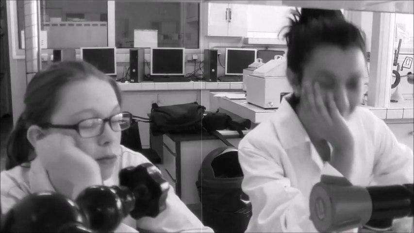 Les propriétés antiseptiques de la salive canine (vidéo de PTA, lycée ETSL Paris)